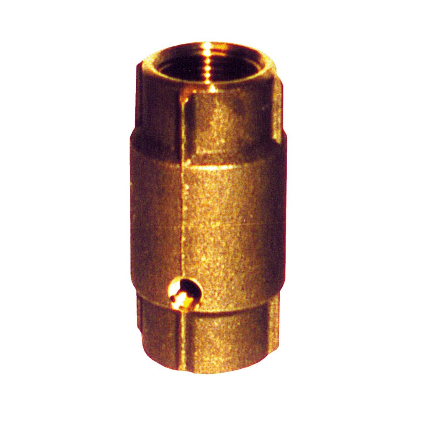 Simmons 1 In. Silicon Bronze Spring Loaded Check Valve Image 1