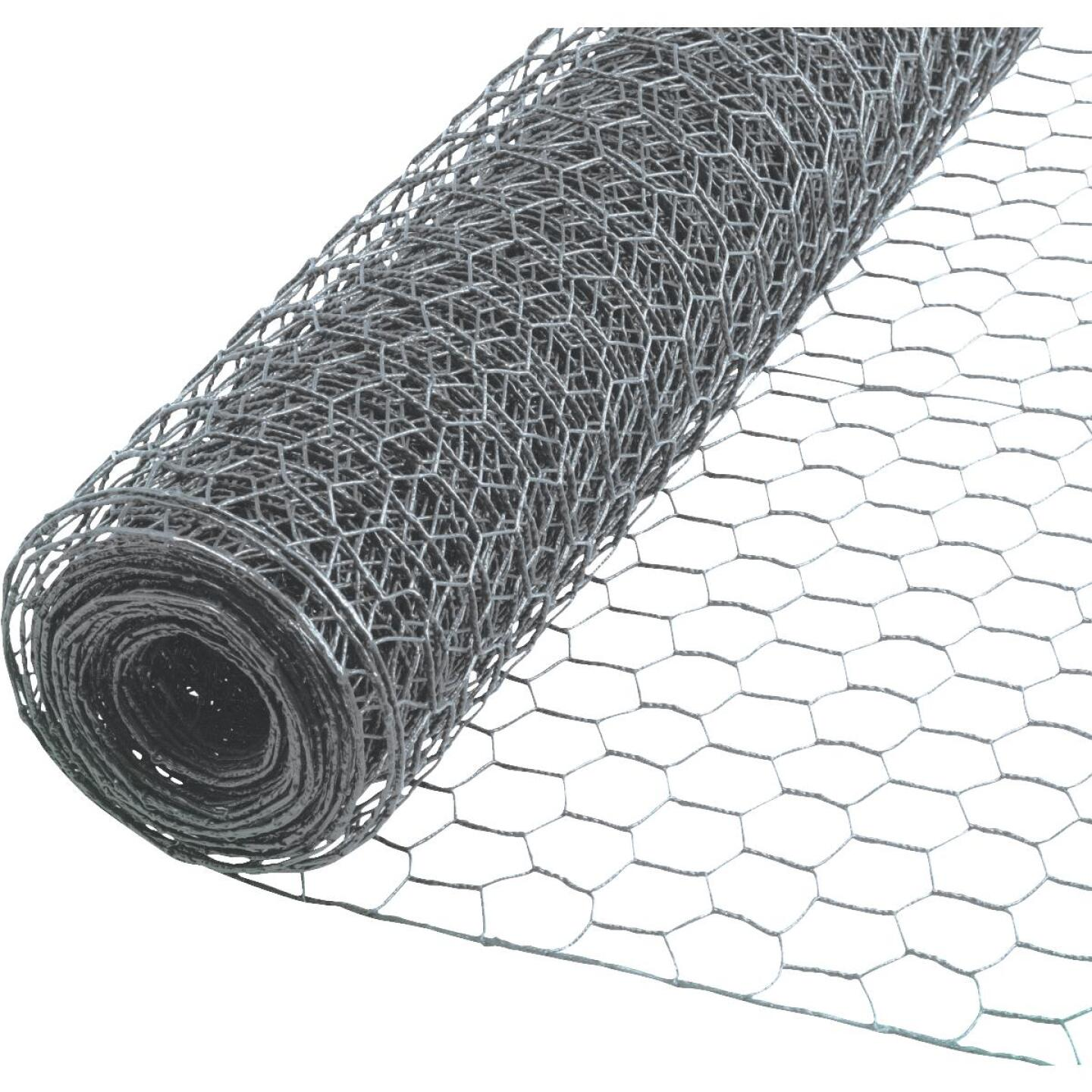 1/2 In. x 24 In. H. x 25 Ft. L. Hexagonal Wire Poultry Netting Image 1