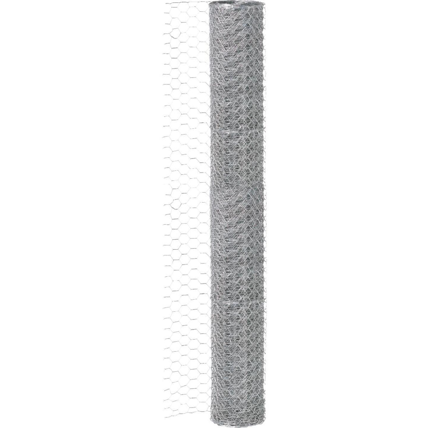 1/2 In. x 24 In. H. x 25 Ft. L. Hexagonal Wire Poultry Netting Image 2